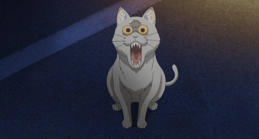 Uzaki Chan Wants to Hang Out The Cat